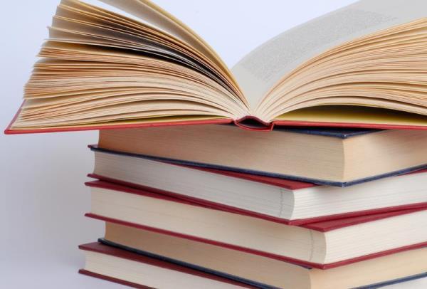 В Церкви не существует планов по изъятию произведений русских классиков из школьного списка по литературе