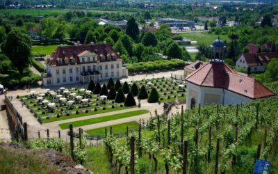 В.В. Кипшидзе: Европа делает антиевропейский выбор, отказываясь от христианского наследия